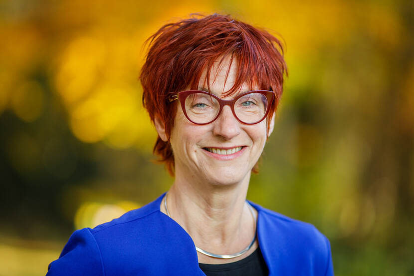 prof.dr.ir. G (Gerda) van Dijk
